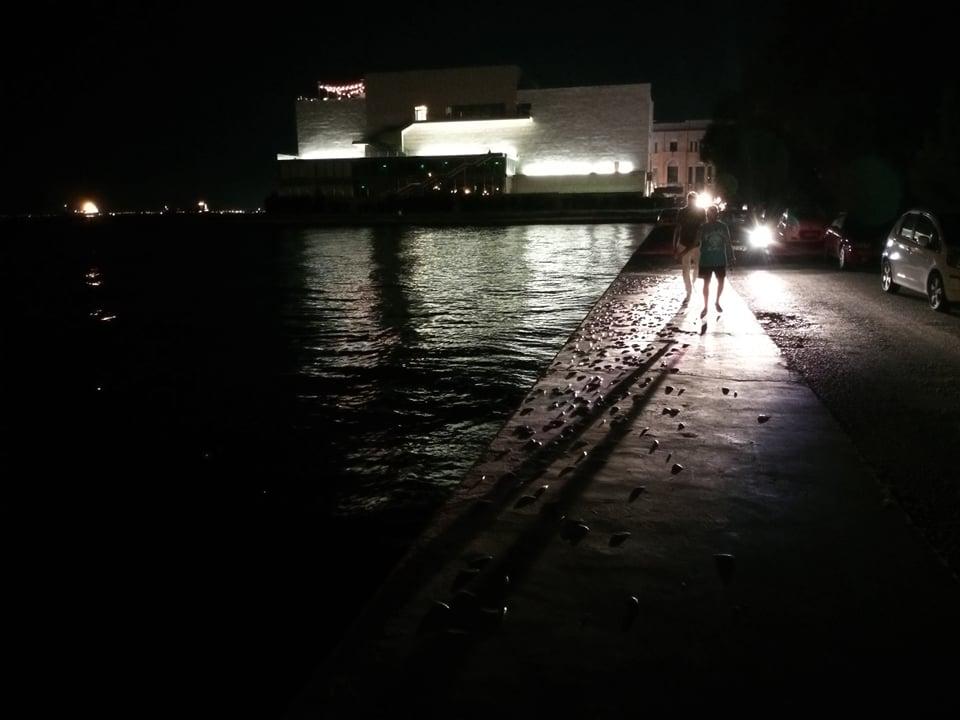 Θεσσαλονίκη: Με ψόφια ψάρια πλημμύρισε η προκυμαία της Νέας Παραλίας, φωτογραφία-1